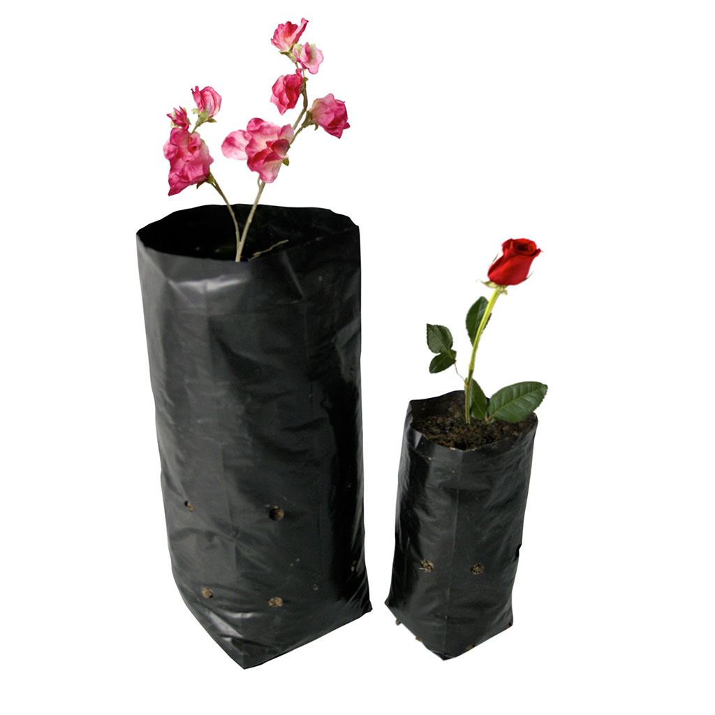 Seedling Bag With Hole Donewell Plastics